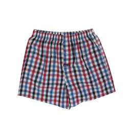 Blue and Red Check Boxers